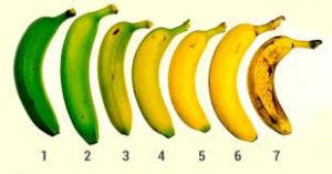 степень зрелости плодов