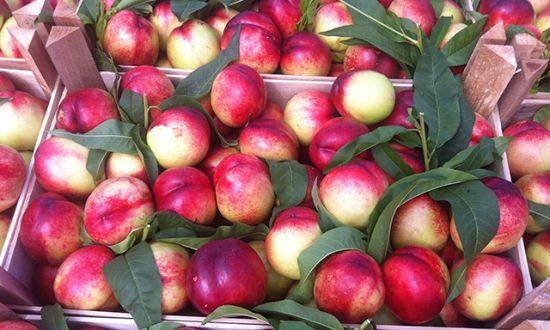 фрукты в ящиках