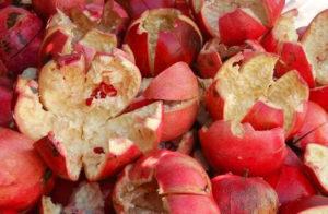 кожура фрукта