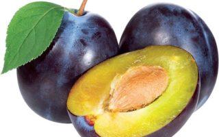 плоды сливового дерева