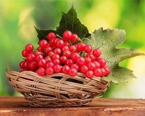 ягоды в корзинке