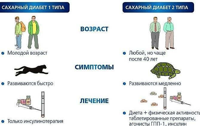 отличия диабета 1 и 2 типа
