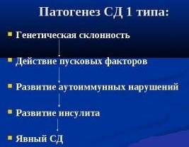механизм развития СД 1 типа